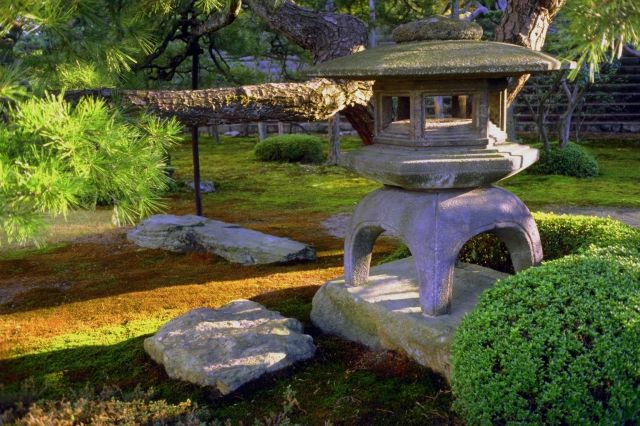 Soothing image of japanese garden. A peaceful spot to enhance creativity